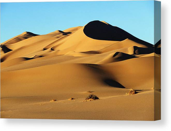 Wilderness Canvas Print featuring the photograph Sand Dunes In Desert by Axiom Photographic