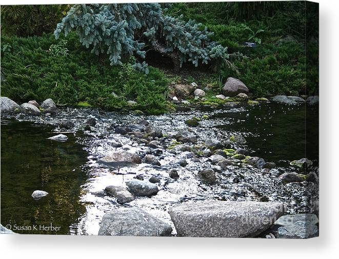 Outdoors Canvas Print featuring the photograph Silver Stream by Susan Herber
