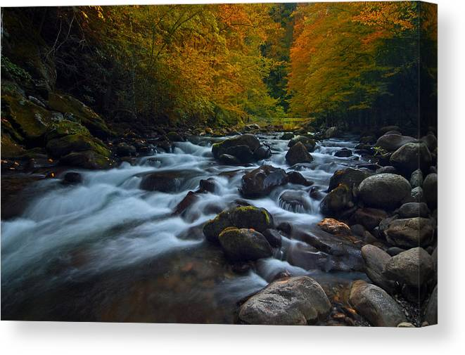 Stream Canvas Print featuring the photograph Smoky Mountains Stream by Ron Sloan