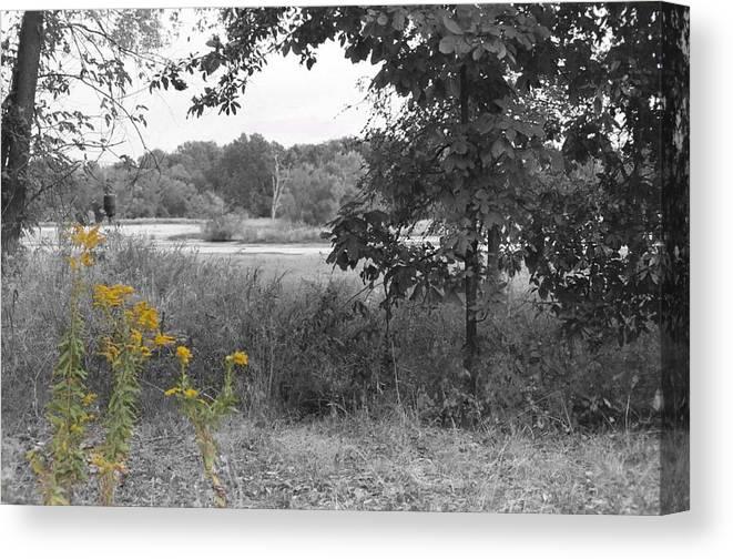 Uptown Arts Canvas Print featuring the photograph Southern Illinois Decolorized by Paul Louis Mosley