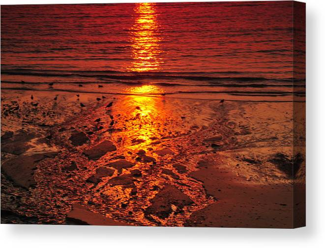 Sunset Canvas Print featuring the photograph Sunset 4 by Jenny Potter