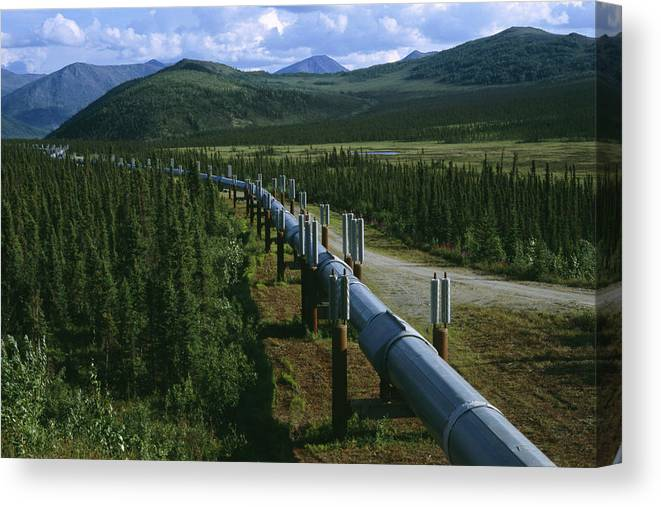 North America Canvas Print featuring the photograph The Trans-alaska Pipeline Runs by Melissa Farlow