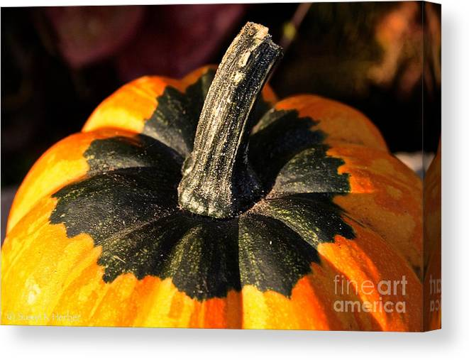 Outdoors Canvas Print featuring the photograph Topper by Susan Herber