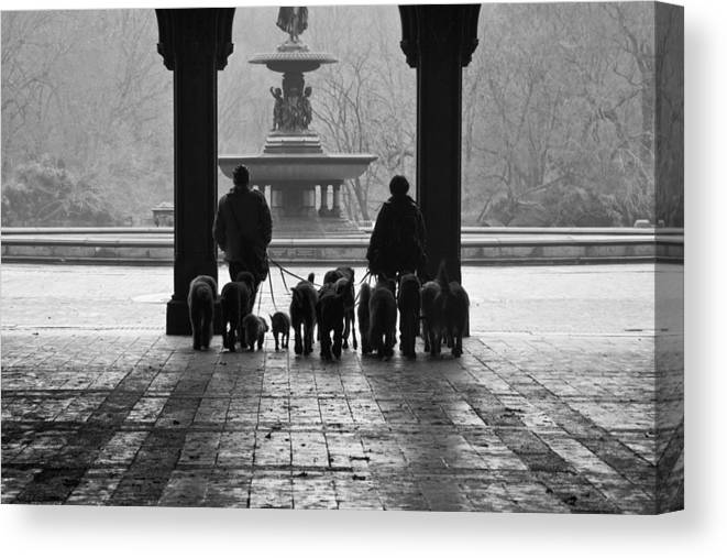 Bethesda Terrace Canvas Print featuring the photograph Walk In The Park by Heidi Reyher