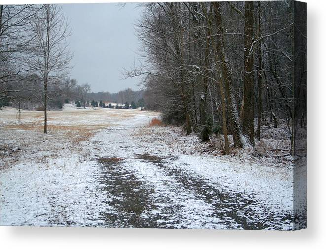 Snow Canvas Print featuring the photograph Winter Pasture by Cyndi Brewer
