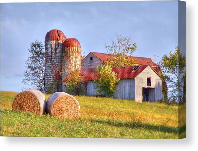 Barn Canvas Print featuring the photograph Two by Mitch Cat