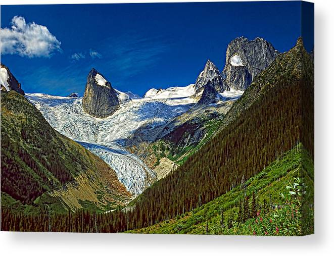 Mountains Canvas Print featuring the photograph Bugaboo Spires by Steve Harrington