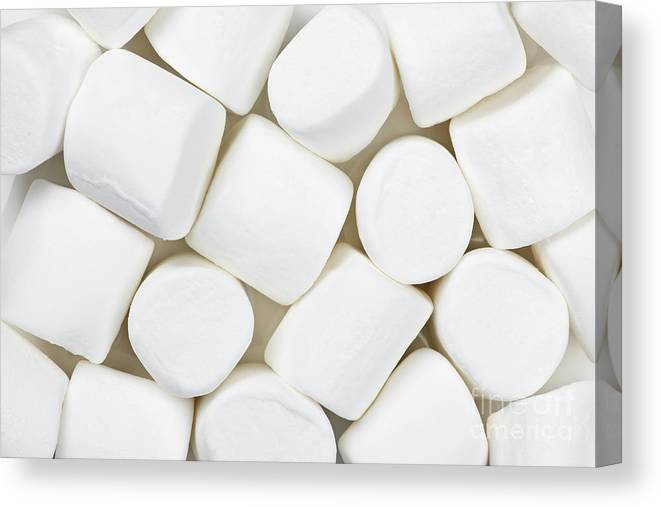 Marshmallows Canvas Print featuring the photograph Marshmallows by Elena Elisseeva