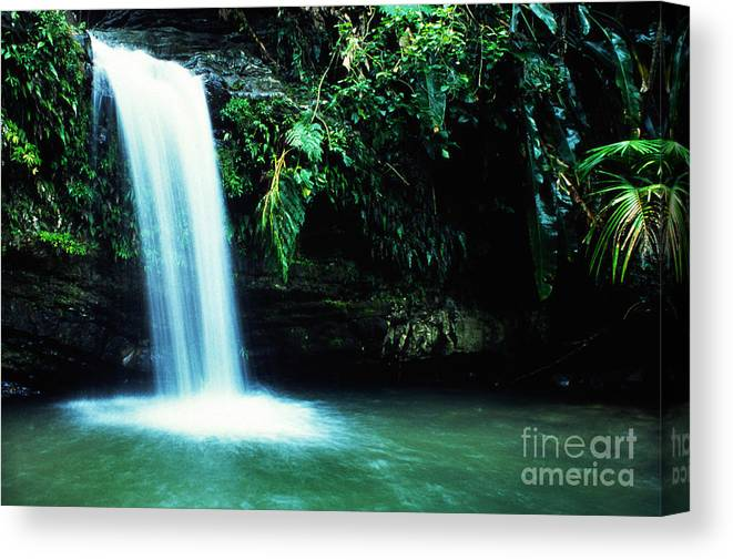 Puerto Rico Canvas Print featuring the photograph Quebrada Juan Diego Waterfall by Thomas R Fletcher