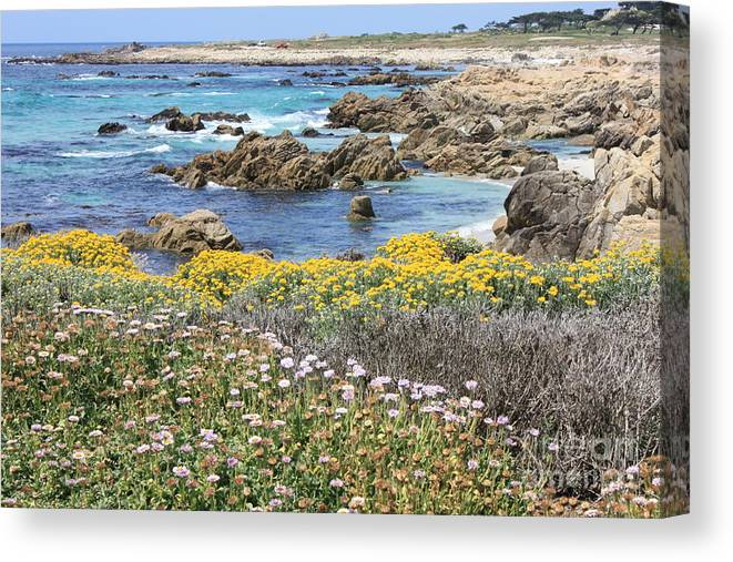 California Canvas Print featuring the photograph Rocky Surf With Wildflowers by Carol Groenen