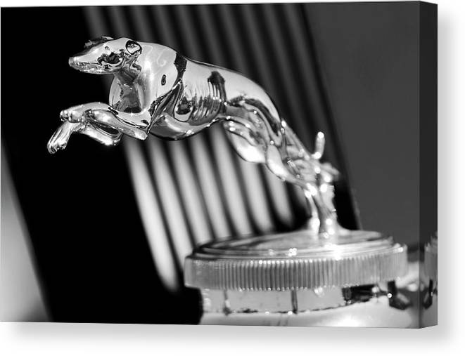 1930 Lincoln Berline Canvas Print featuring the photograph 1930 Lincoln Berline Hood Ornament by Jill Reger