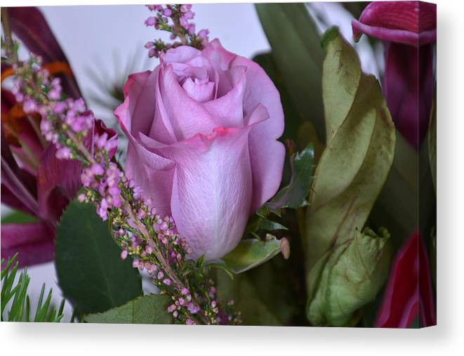 Flowers 2016 Canvas Print featuring the photograph Purple Rose by Ti Oakva