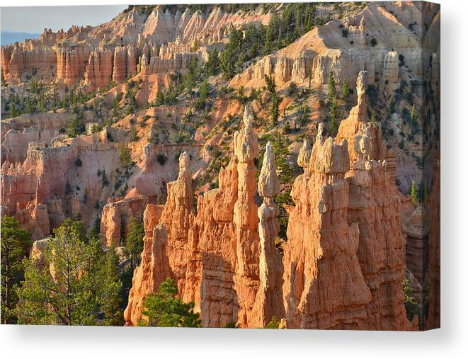 Bryce Canyon National Park Canvas Print featuring the photograph Fairyland Canyon by Ray Mathis