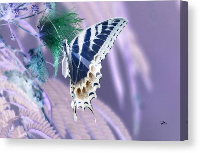 Air Canvas Print featuring the photograph 5816 2 by Jim Simms