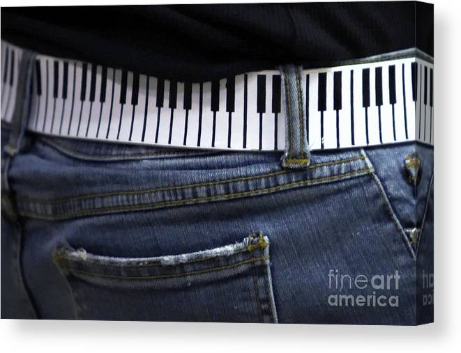 Acoustic Canvas Print featuring the photograph A Belt Of Cords by Alan Look