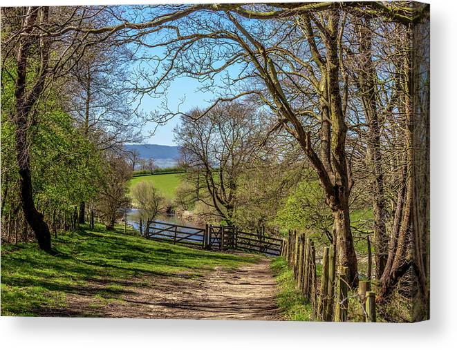 Agriculture Canvas Print featuring the photograph A Country Pathway In Northern England by W Chris Fooshee