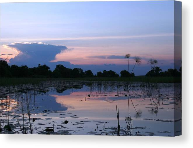 African Delta Canvas Print featuring the photograph African Delta by Linda Russell