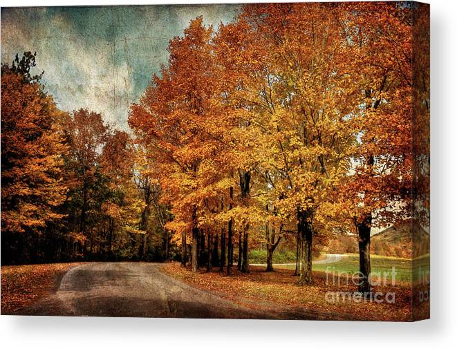 Country Road Canvas Print featuring the photograph Almost Home by Lois Bryan