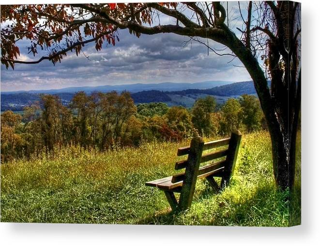 Nature Canvas Print featuring the photograph Alone by Mitch Cat