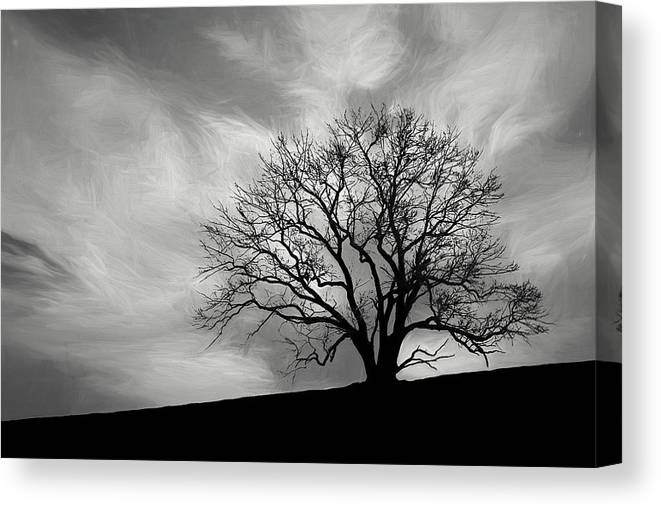 Alone Canvas Print featuring the photograph Alone On A Hill In Black And White by Tom Mc Nemar