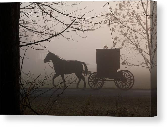 Amish Buggy Canvas Print featuring the photograph Amish Morning 1 by David Arment