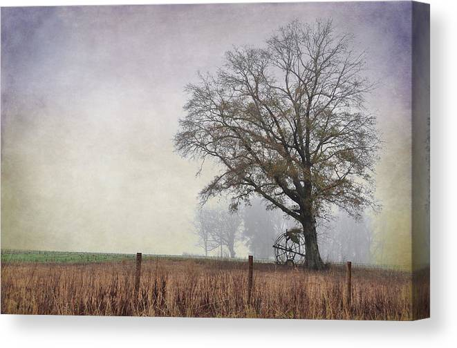 Landscapes Canvas Print featuring the photograph As The Fog Sets In by Jan Amiss Photography