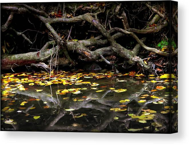 Landscape Canvas Print featuring the photograph Autumn Reflection by Rachel Narvaez