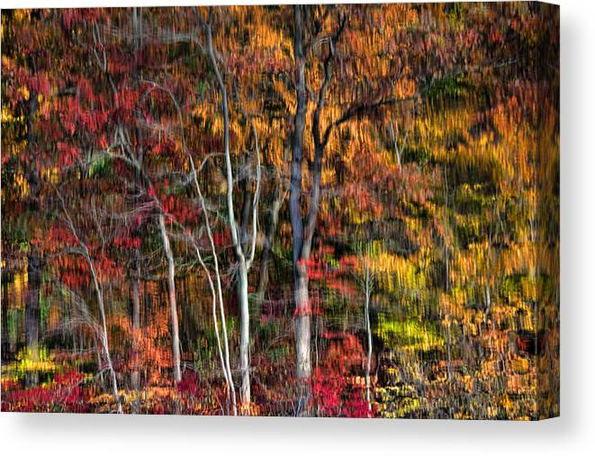 Reflections Canvas Print featuring the photograph Autumn Reflections by June Marie Sobrito