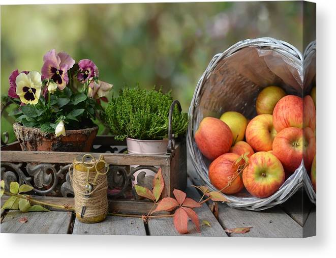 Basket Canvas Print featuring the photograph Basket by Carlene Smith