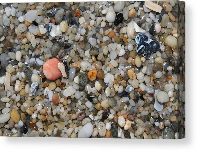 Beach Canvas Print featuring the photograph Beach Stones by Linda Sannuti
