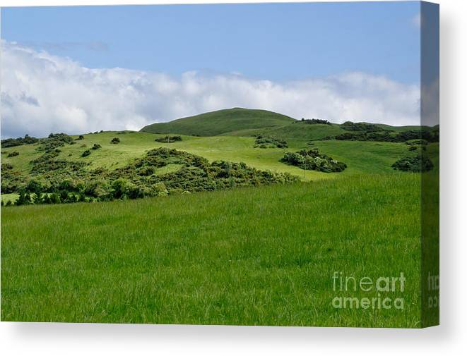 Beecraigs Canvas Print featuring the photograph Beecraigs Hills. by Elena Perelman