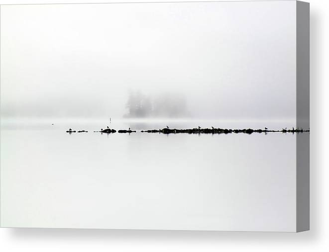 Fog Canvas Print featuring the photograph Beyond The Rocks by Cathy Beharriell