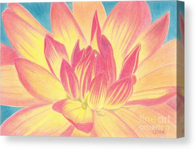 Flower Canvas Print featuring the painting Bloom by Carol Bond Art