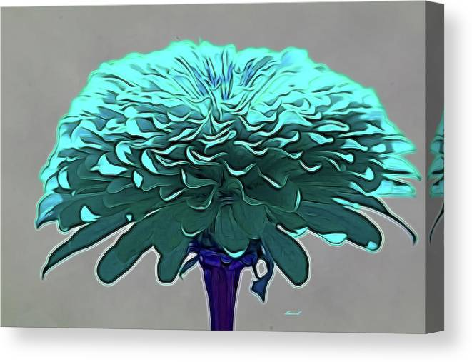 Flower Art Canvas Print featuring the photograph Blue Crown by Dennis Baswell
