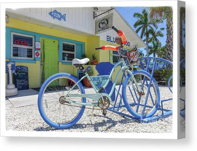 Florida Canvas Print featuring the photograph Blue Dog Matlacha Island Florida by Edward Fielding