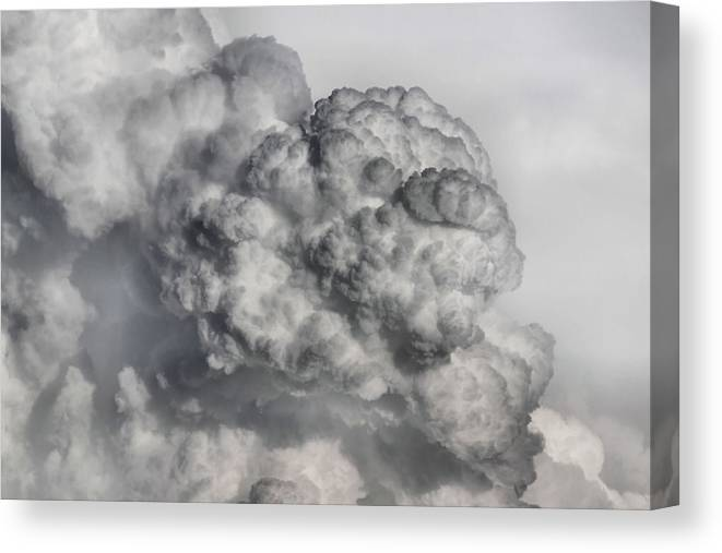 Cloud Canvas Print featuring the photograph Boomer by Karen Scovill