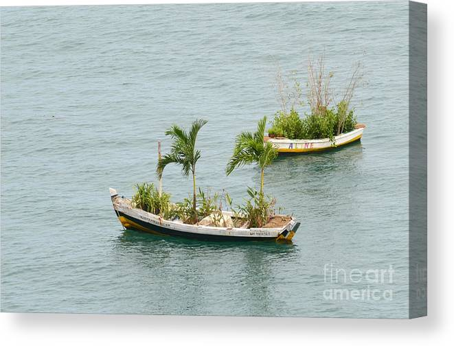Salvador Canvas Print featuring the photograph Botanic Garden On The Water by Ralf Broskvar