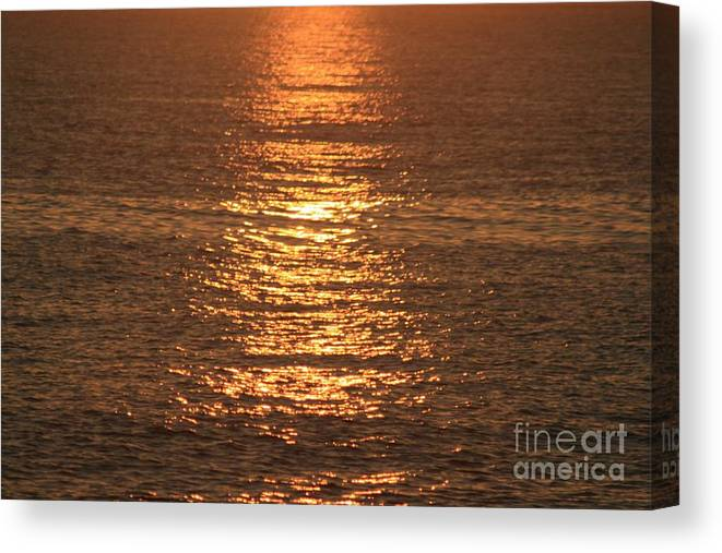 Ocean Canvas Print featuring the photograph Bronze Reflections by Nadine Rippelmeyer