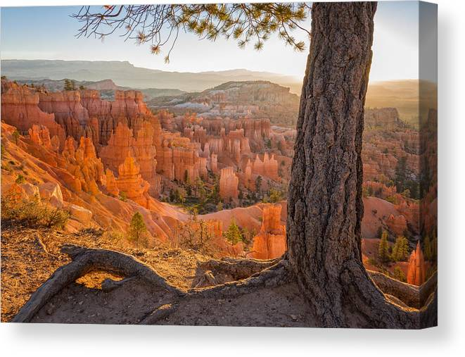Bryce Canyon Sunrise National Park Utah Canvas Print featuring the photograph Bryce Canyon National Park Sunrise 2 - Utah by Brian Harig