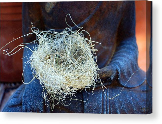Spiritual Canvas Print featuring the photograph Buddah's Nest by Heather S Huston
