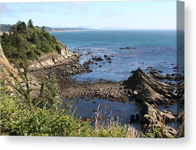 Cape Arago Canvas Print featuring the photograph Cape Arago by Dylan Punke