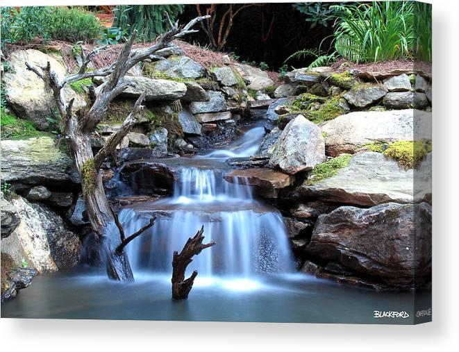 North Carolina Canvas Print featuring the photograph Carolina Mountain Stream by Al Blackford