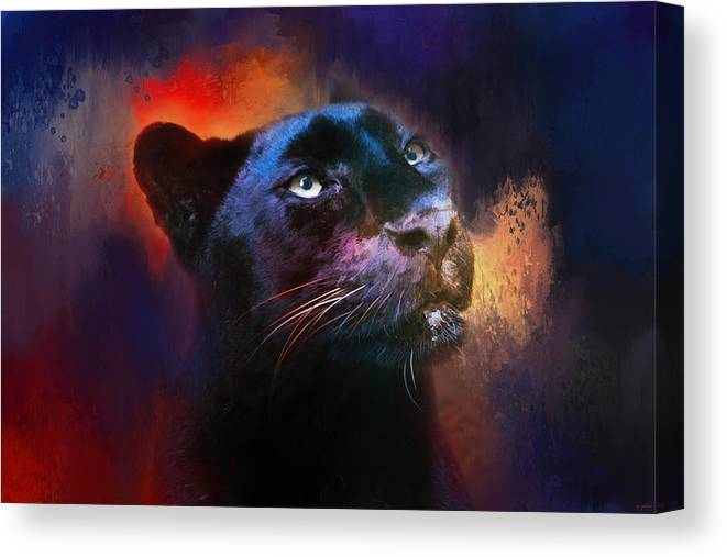 Jai Johnson Canvas Print featuring the photograph Colorful Expressions Black Leopard by Jai Johnson