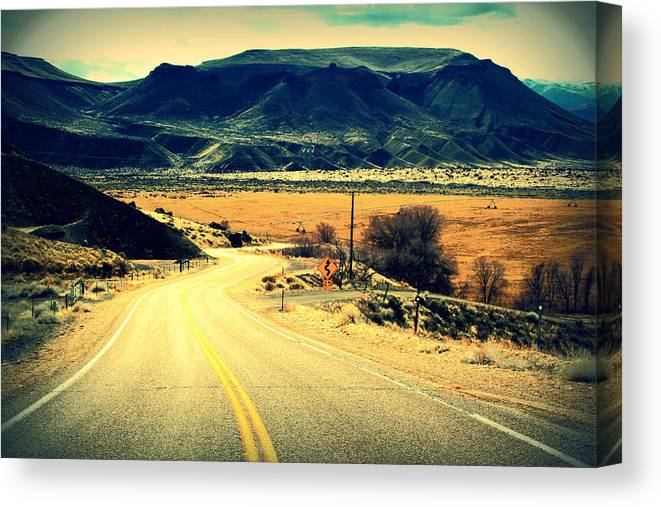 Country Canvas Print featuring the photograph Country Road by Michael Draper