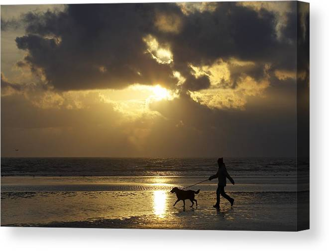 Animal Canvas Print featuring the photograph County Meath, Ireland Girl Walking Dog by Peter McCabe
