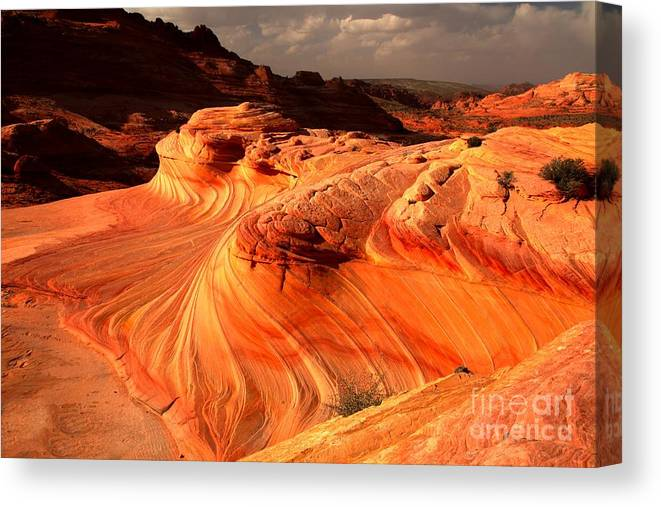 The Wave Canvas Print featuring the photograph Coyote Buttes Rainbow Dragon by Adam Jewell