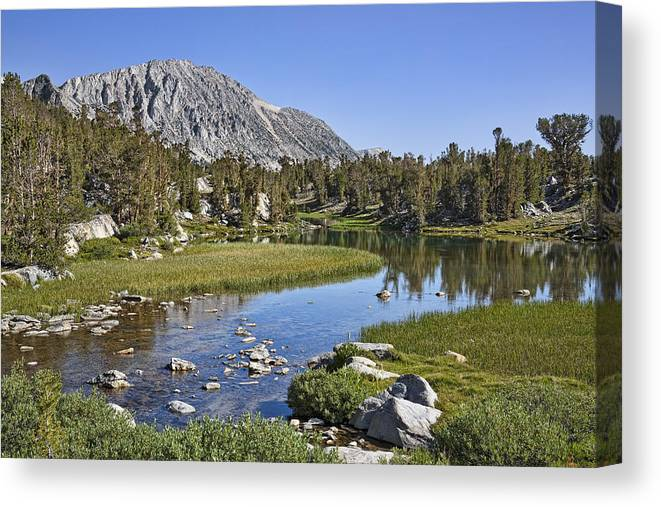 Water Canvas Print featuring the photograph Creek With A View by Kelley King
