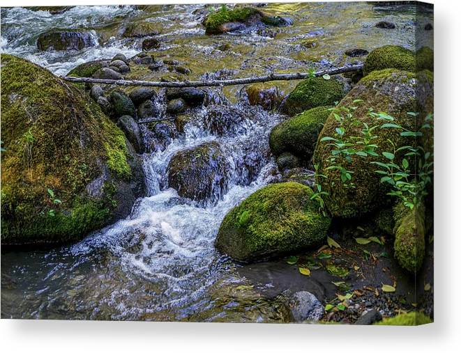 Oregon Canvas Print featuring the photograph Crystal Clear Waters by Ric Schafer