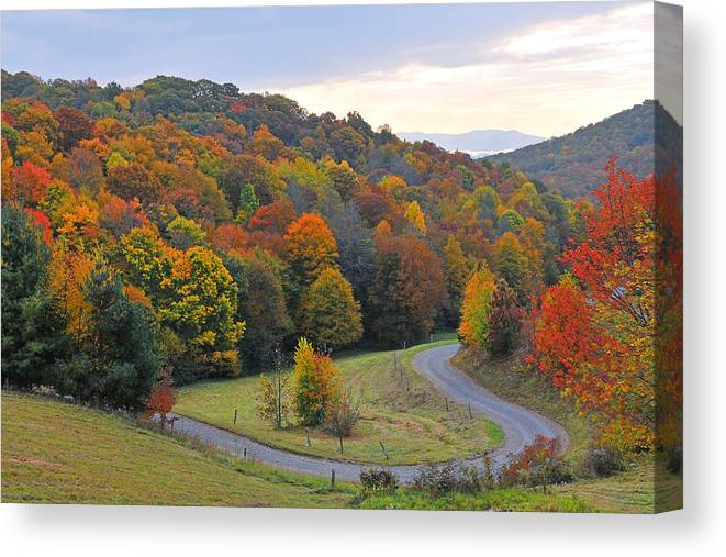 Rural Scene Canvas Print featuring the photograph Curve Of Color by Alan Lenk