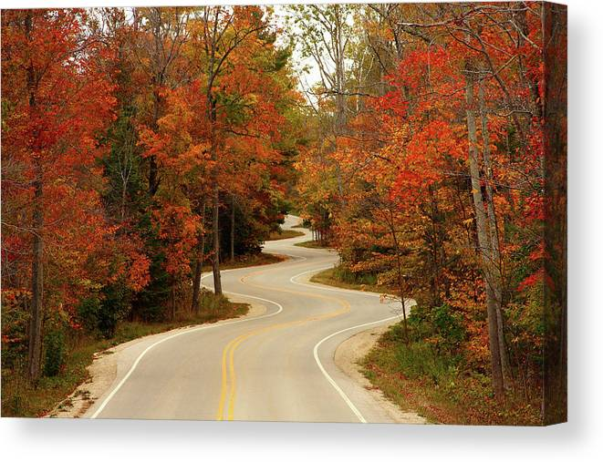 3scape Canvas Print featuring the photograph Curvy Fall by Adam Romanowicz